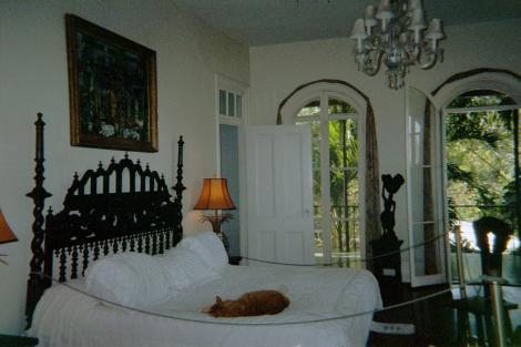 Cama de Hemingway. Um gato dorme sobre ela, como ele gostava.