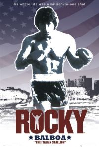 Rocky-flag-FP1731-l